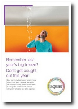E-COMMS / PRINT: Emailed and printed PDF: Ageas escape of water campaign