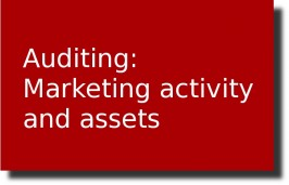 Our take on AUDITING: MARKETING ACTIVITY AND ASSETS
