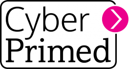 BRAND: Corporate ID: Cyber Primed